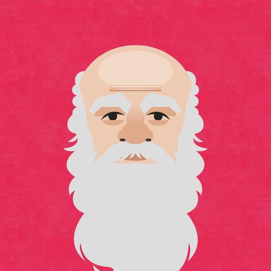 Illustration: Portraits - Socrates