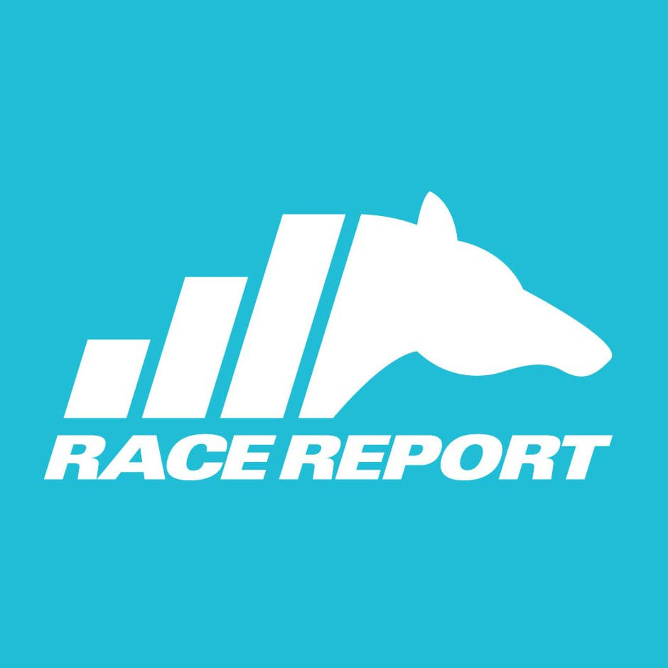 Race Report: Branding & Website - Logo